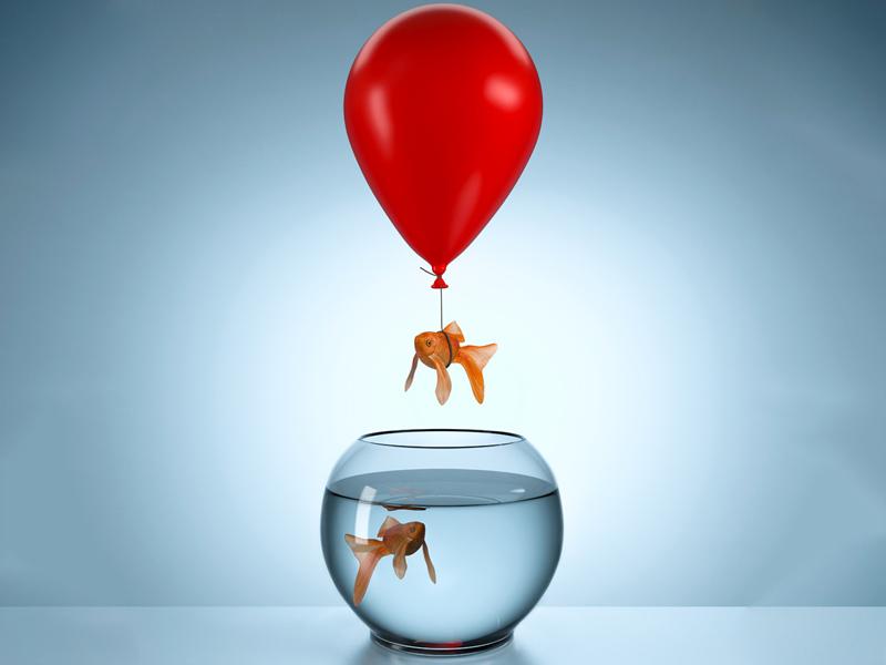 Image result for att vara modig
